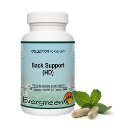 Back Support (HD) (while supplies last)